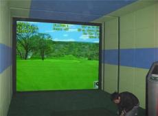專業版模擬高爾夫