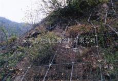 山體防護網 主動防護網