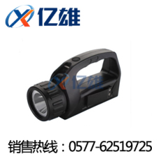 IW5500 IW5500/BH手提式强光巡检工作灯IW5500