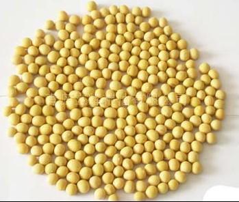 供应优质大豆每吨3300元