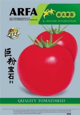 蔬菜种子 优质蔬菜种子 西红柿种子巨粉宝石