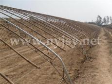 日光溫室建設技術 無立柱鋼管竹木結構